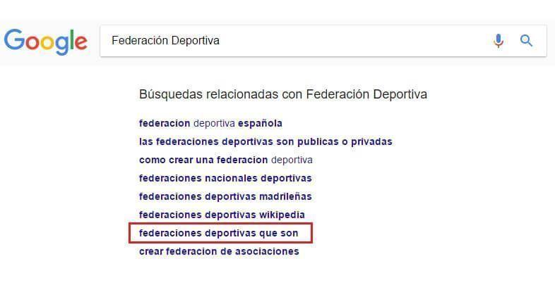 Busqueda Google federacion deportiva